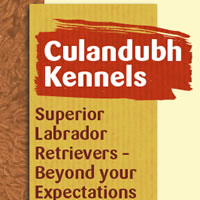 Almonte website for Culandubh Kennels